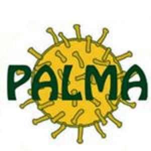 2020_12_27_Paleontologia_Museus_Palma