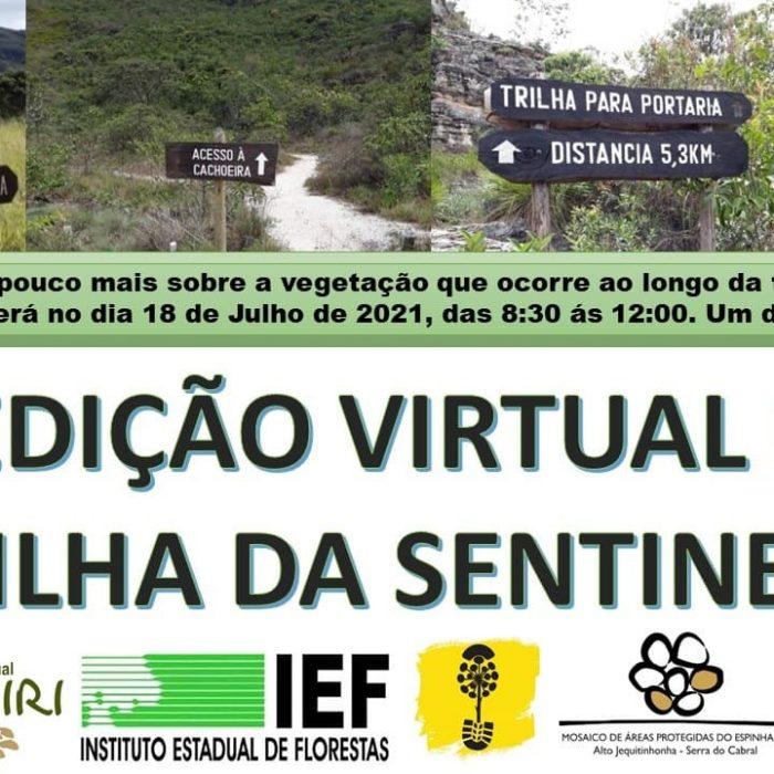 2021_07_09_noticia_expedição_trilha_sentinela
