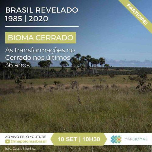 2021_09_09_Notícia_Webinar-Brasil-Revelado-1985-2020-As-transformações-no-Cerrado
