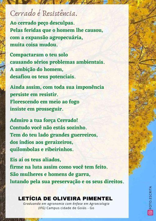2021_09_10_Homepage_Declarações-de-amor-ao-cerrado_Cerrado-e-resistencia