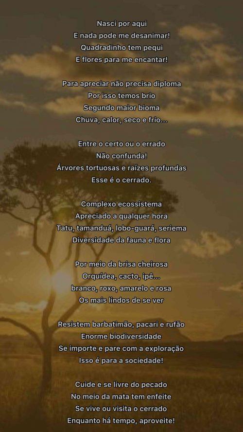 2021_09_10_Homepage_Declarações-de-amor-ao-cerrado_Nasci-por-aqui