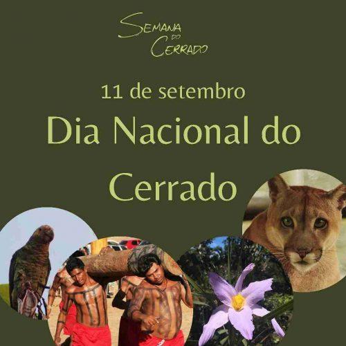 2021_09_14_Notícia_Semana-do-cerrado_capa