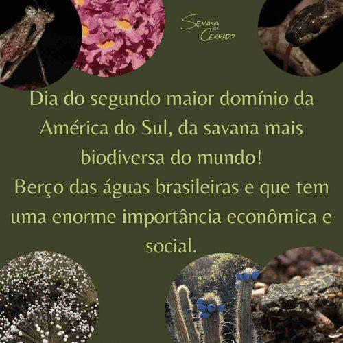 2021_09_14_Notícia_Semana-do-cerrado_img1