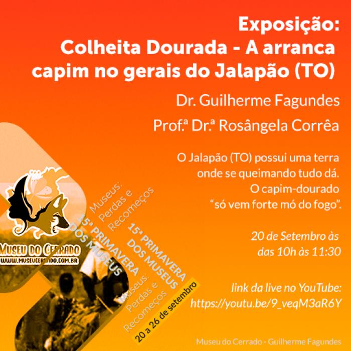 2021_09_16_Notícia_Live-Colheita-dourada