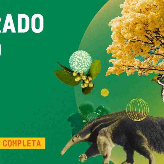 2021_09_20_Notícia_Cerrado-Vivo