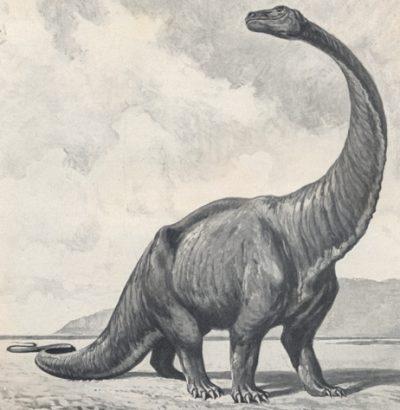 Gigantosaurus - in memoriam Heinrich Harder
